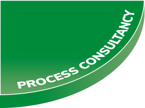 Process Consultancy